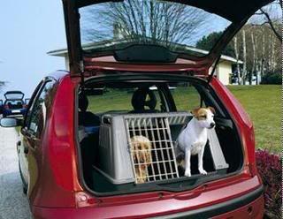 jaula-coche-perro