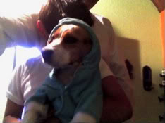 Beagle_Ashly_sudadera