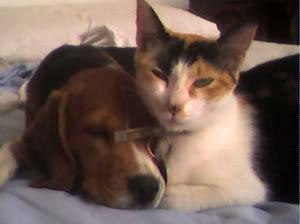 Vilma y Minina