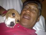 beagle_Wiwis_y_Arturo