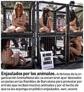 protesta_enjaulados