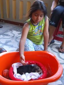 canastos_para_cachorro