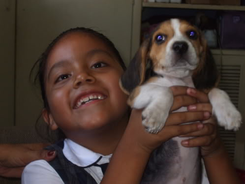 Beagle_Pakita_y_Evelita