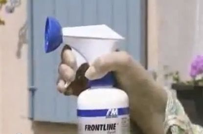 video-tutorial-aplicar-FrontLine-Spray