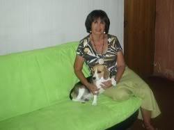 beagle-polita-y-marcela