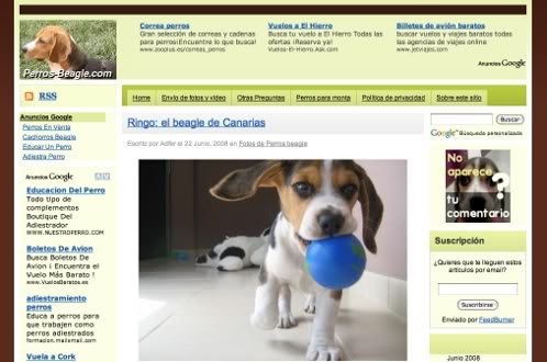 un diseño del blog Perros-Beagle.com