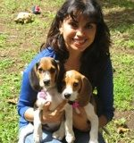 Aura-con-beagles-Tandy-y-Connie