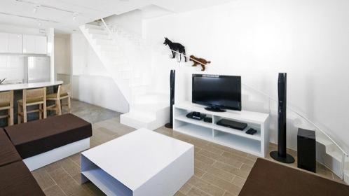 Renovacion-casa-con-escalera-perros