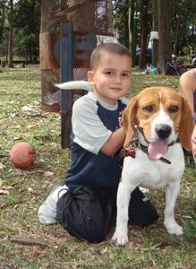 beagle-Malakias-con niño