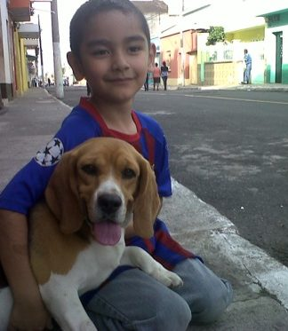 un niño con su beagle-Dinky-Guatemala