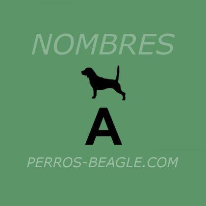 Nombres-perros_A