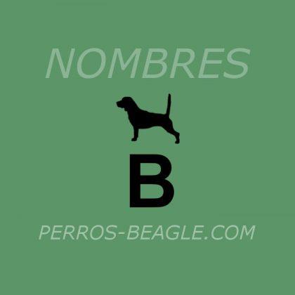 Nombres-perros_letra_B