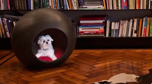 MODERNA caseta-plastico-para-perros