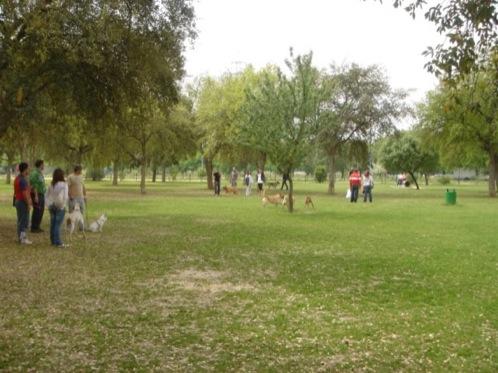 zona para perros en el Parque del Alamillo en Sevilla