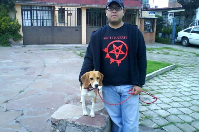 beagle-Luna-y-Jose-Miguel
