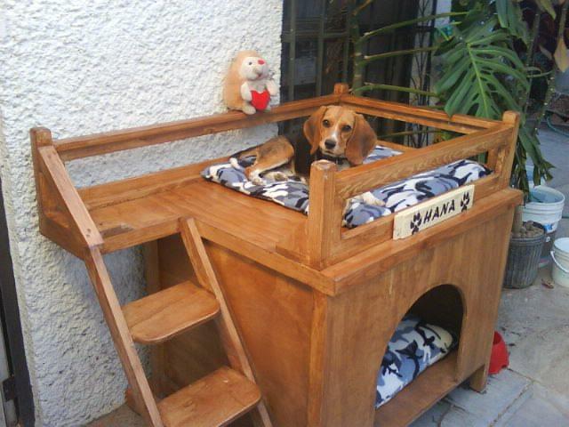 C mo ba ar a un perro el m todo de lizbeth - Como hacer caseta de madera ...