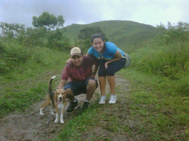Spyke, beagle con problema de coprofagia canina