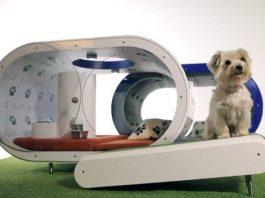 Casetas-para-perros-Samsung