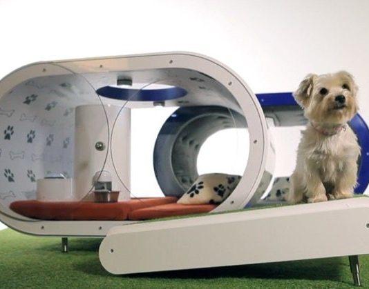 General perros beagle - Casetas para perros ...