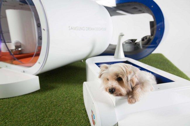 Casetas para perros con tecnolog a de samsung for Casetas para perros bricomart
