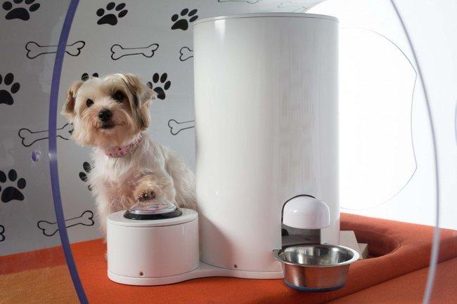Casetas-para-perros-Samsung-dispensador-comida