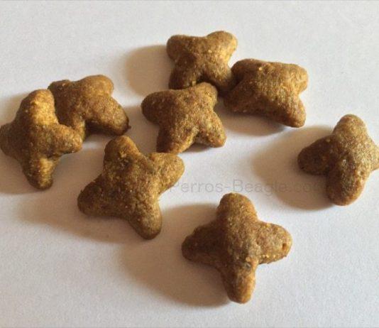 pienso-para-perros-Beagle-Adult